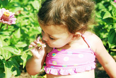 Baby Smelling Flower. Baby Girl smelling of a zinnia in the garden Royalty Free Stock Images