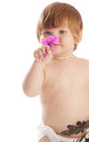Baby smelling a flower. Portrait of a baby girl smelling a flower royalty free stock photo
