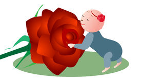 Baby Smelling Flower. Adorable baby girl smelling red rose royalty free illustration