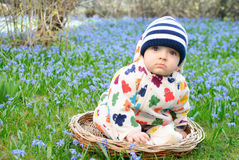 Baby snowdrops sit Stock Images