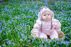 Baby snowdrops sit Stock Image