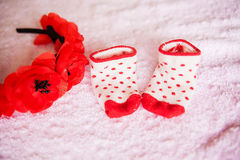 Baby socks and a wreath of poppies Royalty Free Stock Photo
