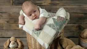 Baby and soft toy dogs. Basket with a small child stock video