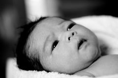 Baby solemn face Stock Images