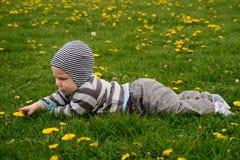 Baby som ligger på gräset Fotografering för Bildbyråer