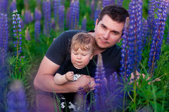 Baby son with dad in lupine field. With trees on background Royalty Free Stock Photo