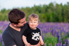 Baby son with dad in lupine field Stock Photo
