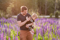 Baby son with dad in lupine field. With trees on background Royalty Free Stock Image
