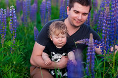 Baby son with dad in lupine field Stock Image