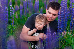 Baby son with dad in lupine field. With trees on background Stock Photo
