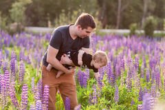 Baby son with dad in lupine field. With trees on background Stock Image