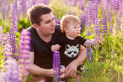 Baby son with dad in lupine field. With trees on background Stock Photography