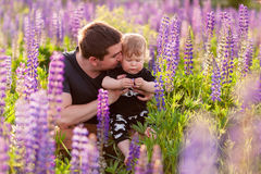 Baby son with dad in lupine field. With trees on background Stock Images