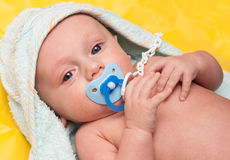 Baby with soother (baby's dummy) Royalty Free Stock Photography