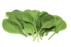 Baby spinach leaves arranged. Royalty Free Stock Photos