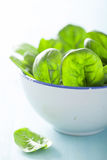 Baby spinach leaves in bowl Royalty Free Stock Photography