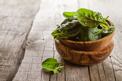 Baby spinach leaves in bowl Royalty Free Stock Photos