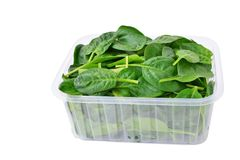 Baby spinach leaves in plastic container  Stock Images