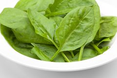 Baby spinach leaves in a white bowl Stock Photos