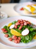 Baby spinach salad with orange, radish slices and diced ham. royalty free stock images