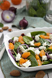 Baby spinach salad, selective focus. Stock Photography