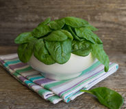 Baby spinach in a white plate Royalty Free Stock Photography