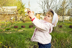 Baby in the spring garden Stock Photography