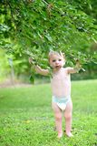 Baby stands under mulberry tree. Baby with stained mouth holds onto branches of a mulberry tree after eating mulberries stock image