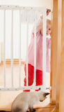 Baby and  stair gate Stock Images