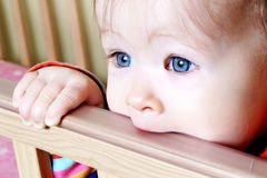 Baby In Standing In Crib Royalty Free Stock Image
