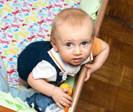 Baby standing in crib Stock Images