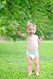 Baby stands under mulberry tree. Baby with stained mouth holds onto branches of a mulberry tree after eating mulberries royalty free stock images