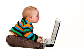 Baby staring at laptop computer, isolated. Young child in striped shirt staring at a laptop computer, isolated Royalty Free Stock Photography