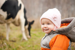 Baby stay near feeding cow Royalty Free Stock Images