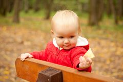 Baby stay on wood bench in park Royalty Free Stock Photos