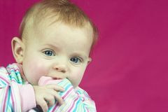 Baby in Stripes. A high key photo of a cute baby on a pink background Royalty Free Stock Photography