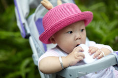 Baby in stroller Stock Images
