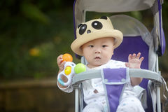 Baby in stroller Stock Photography