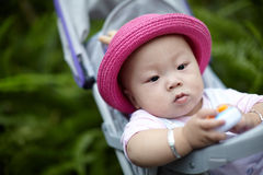 Baby  in stroller playing phone toy Stock Image