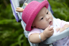 Baby  in stroller playing phone toy Royalty Free Stock Images