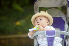 Baby  in stroller playing  toy Stock Photography