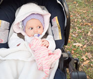 Baby in strollers Royalty Free Stock Photo