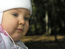 Baby on stump Stock Photos