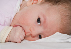 Baby sucking her thumb Royalty Free Stock Photography