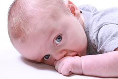 Baby sucking his hand Stock Photo