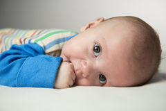 Baby sucking his thumb Royalty Free Stock Image