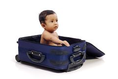 Baby in the Suitcase Stock Photography