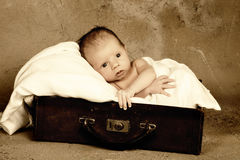 Baby in a suitcase Stock Photo