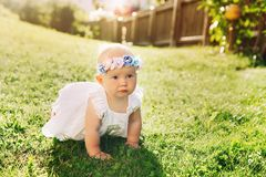 Beautiful little baby girl on nature background Royalty Free Stock Image