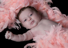 Baby surrounded in feathers Stock Photography